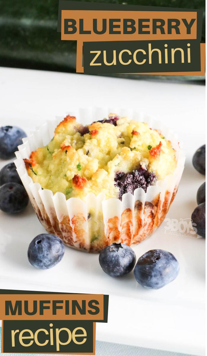 easy blueberry zucchini muffins recipe