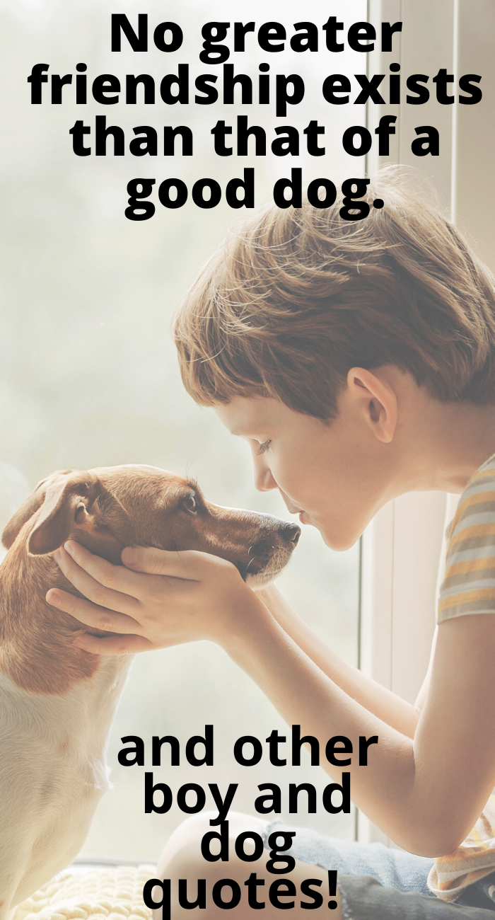 boy and dog quotes
