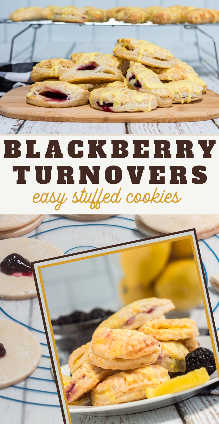 Simple and Easy Homemade Blackberry Turnover Cookies Recipe
