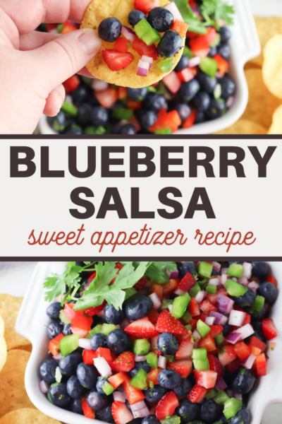 healthy vegetarian blueberry salsa recipe