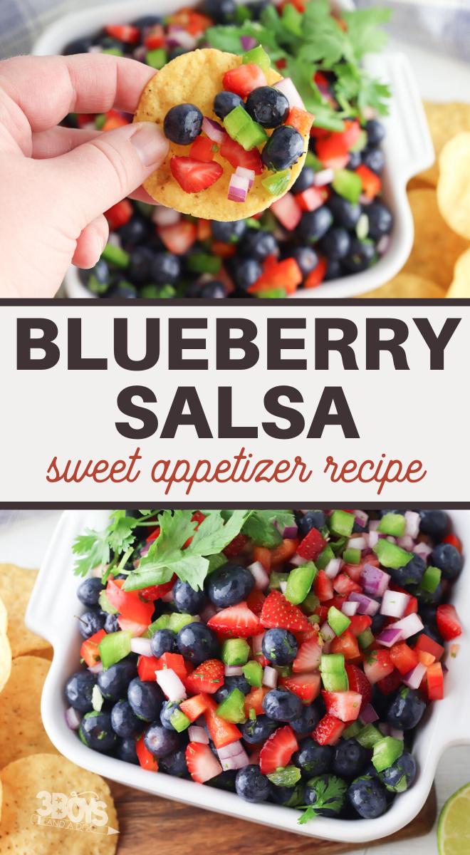 healthy vegetarian blueberry salsa recipe
