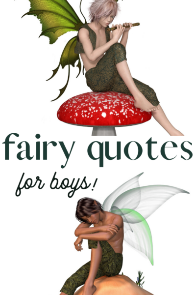 quotes about faeries for boys