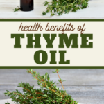 thyme essential oils are super healthy find out all the benefits here