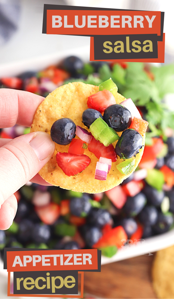 this blueberry salsa is perfect for your next Summer get together