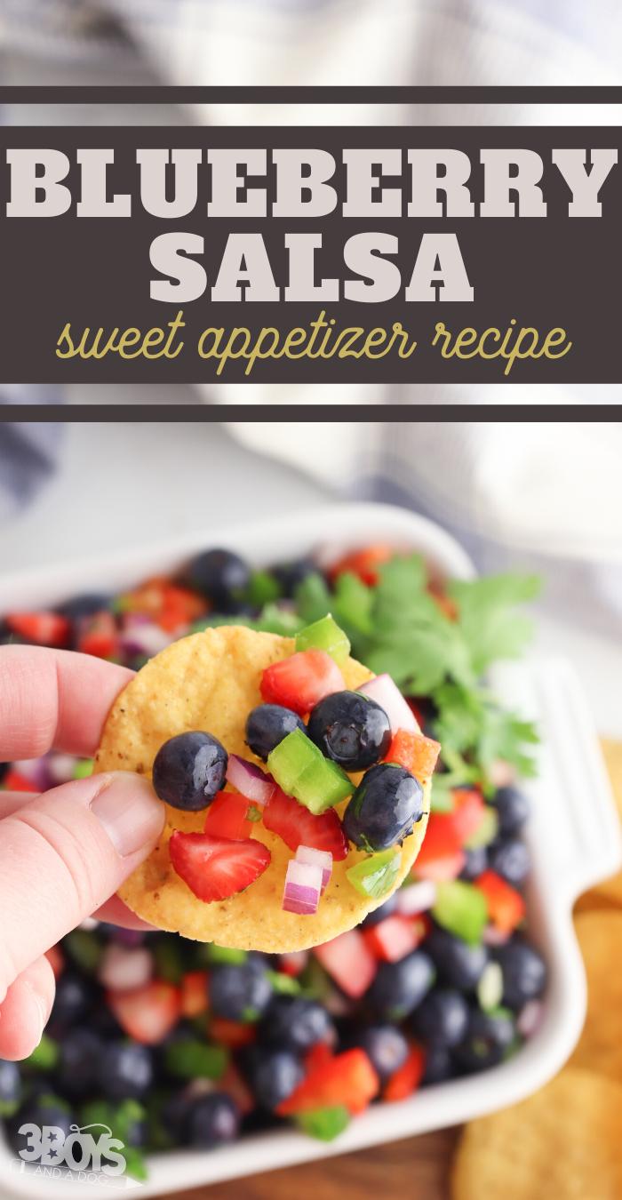 blueberry salsa recipe