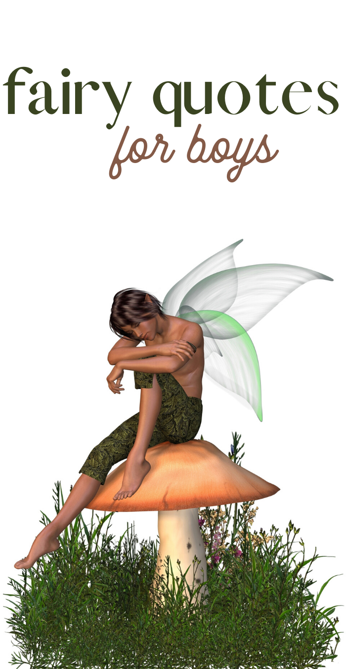 quotes about fairies that are perfect for boys