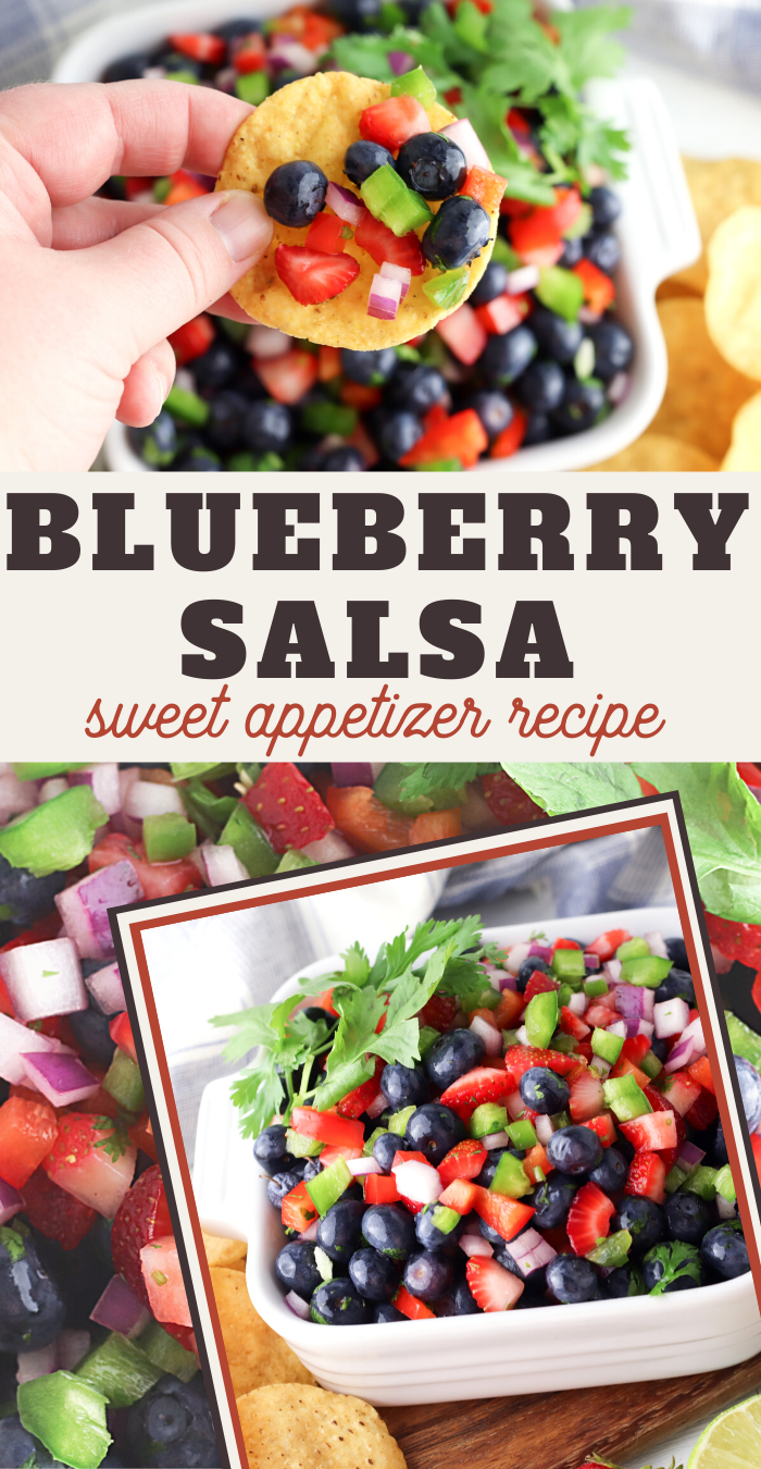 Sweet and Refreshing Blueberry Salsa Recipe