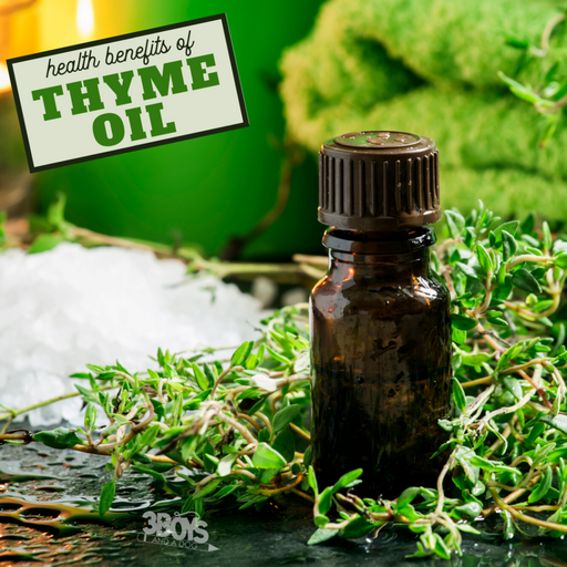 recipes and tips for the getting the most out of your thyme essential oil