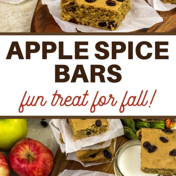 spice bars with raisins