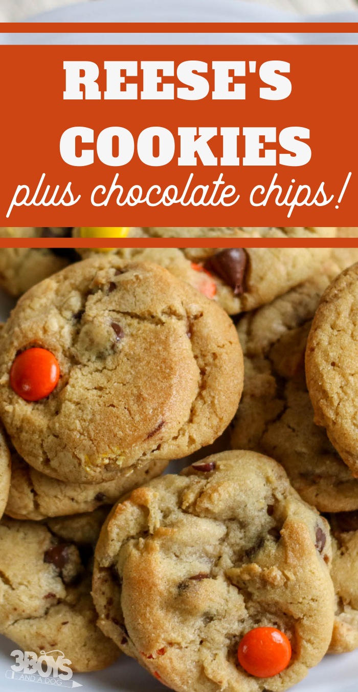 Reese's Pieces Cookie Recipe