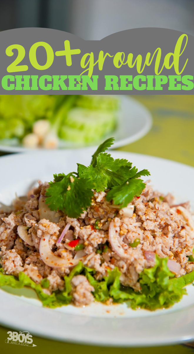 20 Ground Chicken Recipes To Make For Dinner (2)
