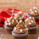 delicious chocolate cupcakes with marshmallows