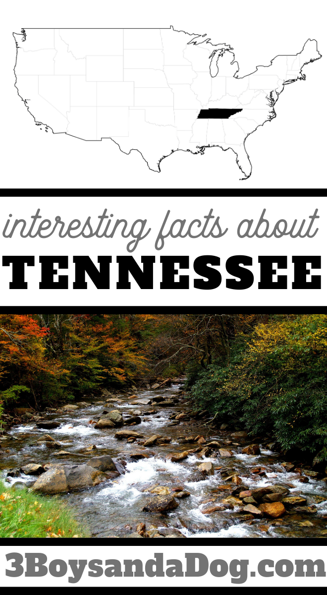 interesting facts about Tennessee
