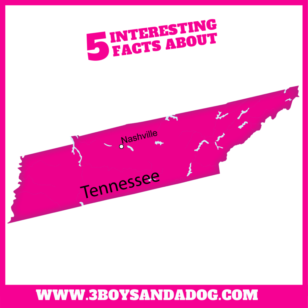 state unit study about Tennessee
