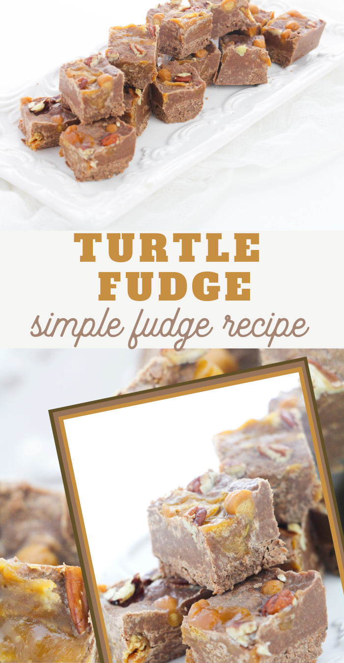 best turtle fudge