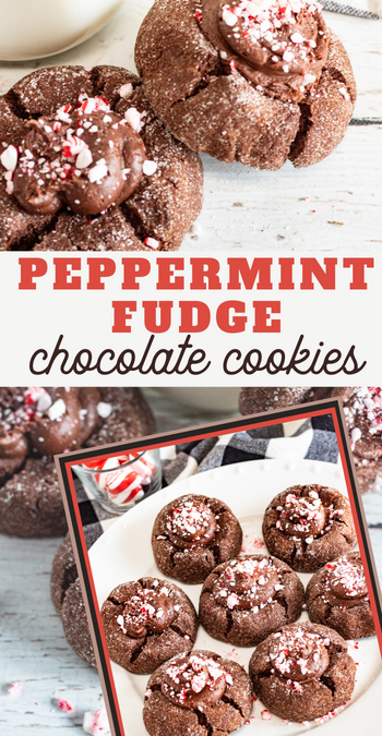 chocolate peppermint fudge cookies