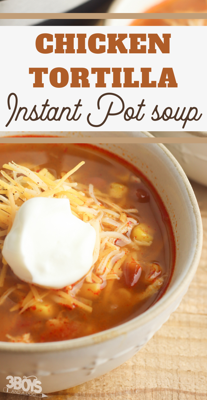 instapot chicken tortilla soup with rotel