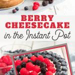instant pot berry cheesecake recipe