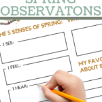 five senses recording worksheets in a spring theme
