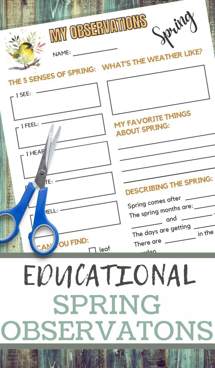 educational printable worksheet for Spring