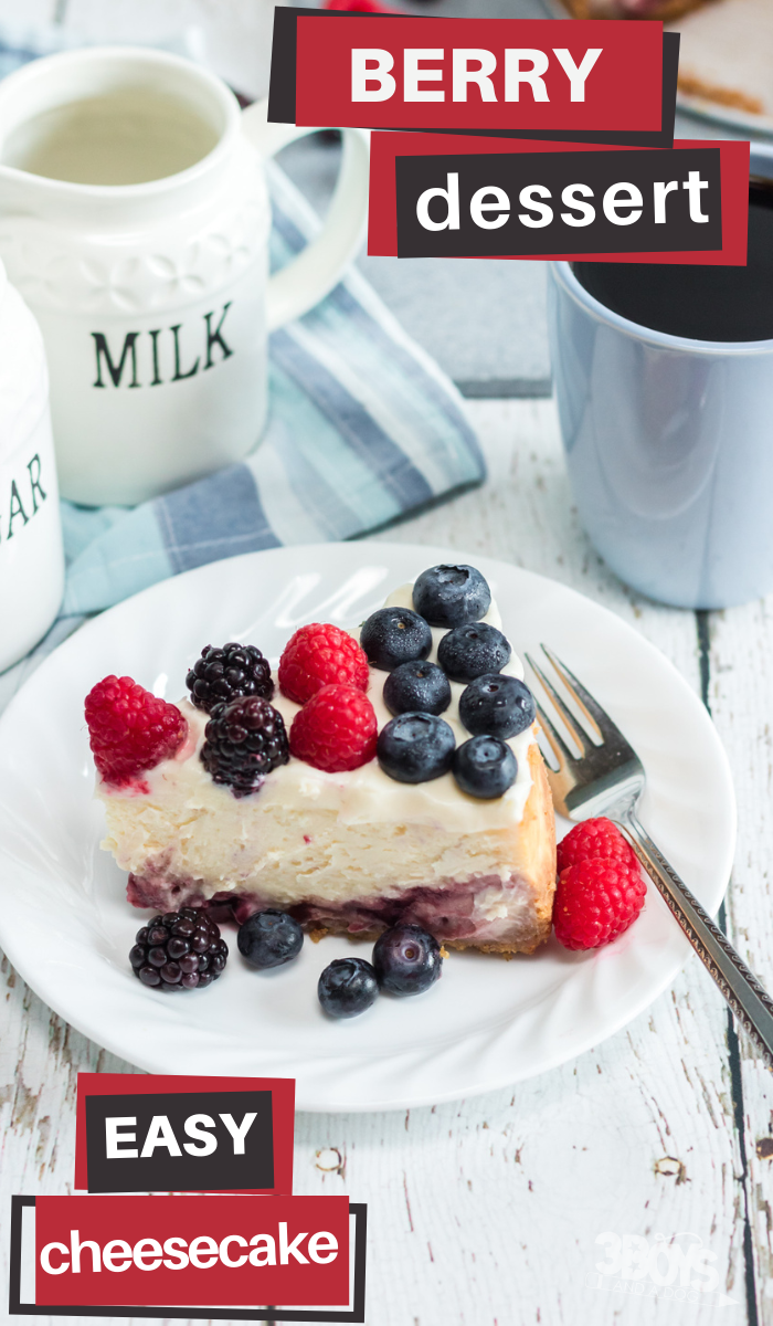 mixed berry cheesecake recipe in the pressure cooker