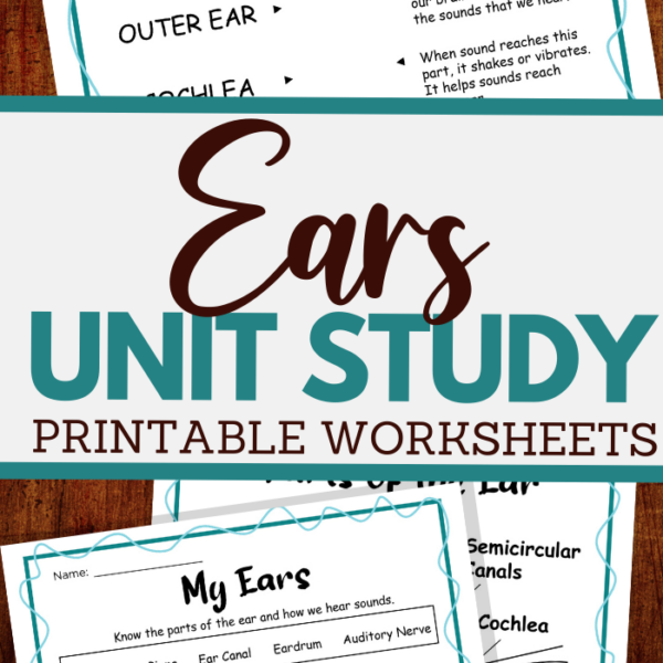 all about the ear unit study for all ages