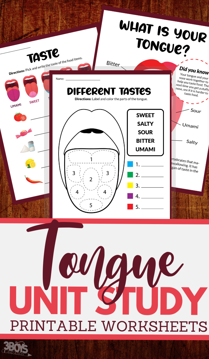 printable unit study worksheets for the human tongue