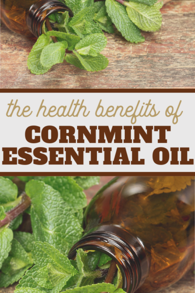 tons of great uses for cornmint essential oil