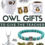 surprise your child's teacher with one or more of these awesome owl themed gifts