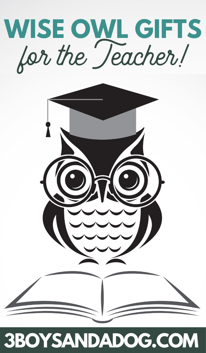 wise owl themed gifts for teacher appreciation