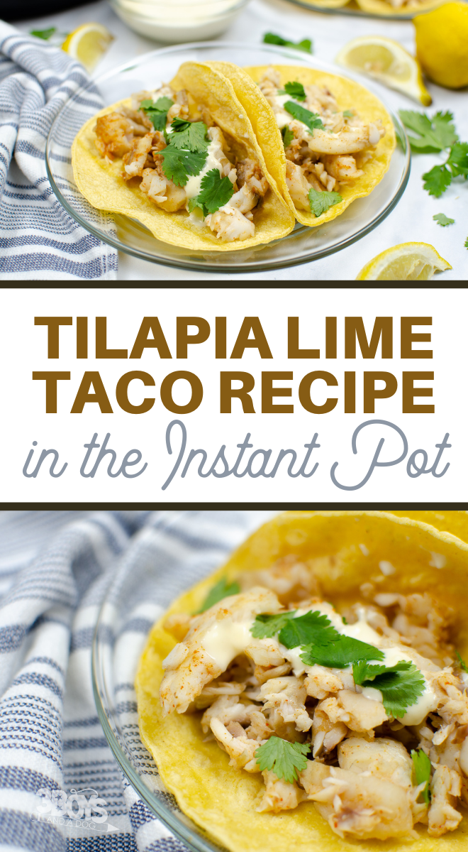 tilapia fish taco recipe