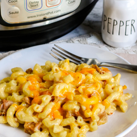 Instant Pot Ham and Cheese Mac